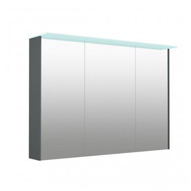Kamė veidrodinė spintelė su šviestuvu NATURA VETRO 100