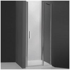 Roth dušo durys TDN1 900